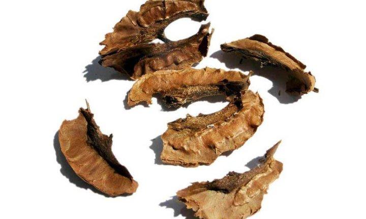Удаление волос при помощи перегородок грецкого ореха